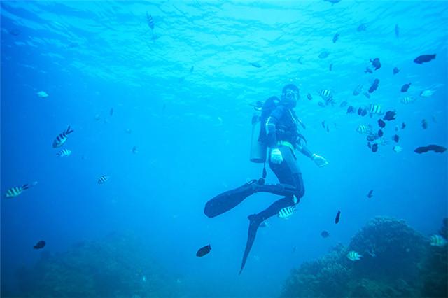 豪華環島潛